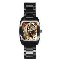 Royal Tiger National Park Stainless Steel Barrel Watch