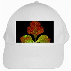 Autumn Beauty White Cap by Nexatart