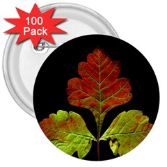 Autumn Beauty 3  Buttons (100 Pack)