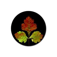 Autumn Beauty Rubber Coaster (round)  by Nexatart