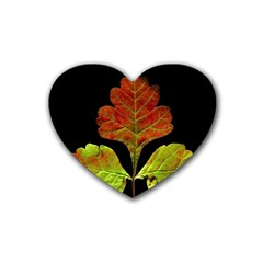 Autumn Beauty Rubber Coaster (heart)  by Nexatart