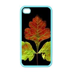 Autumn Beauty Apple Iphone 4 Case (color) by Nexatart