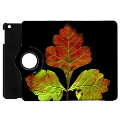 Autumn Beauty Apple Ipad Mini Flip 360 Case by Nexatart