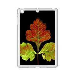 Autumn Beauty Ipad Mini 2 Enamel Coated Cases