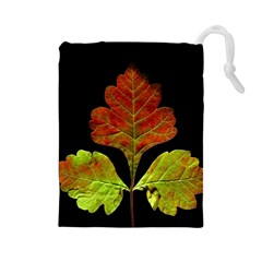 Autumn Beauty Drawstring Pouches (large)  by Nexatart