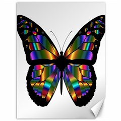 Abstract Animal Art Butterfly Canvas 36  X 48   by Nexatart