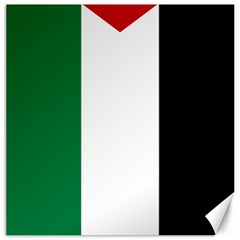 Palestine Flag Canvas 16  X 16