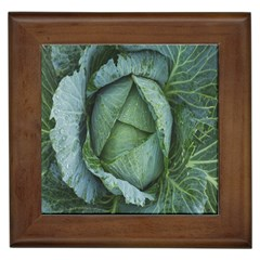 Bright Cabbage Color Dew Flora Framed Tiles