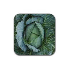 Bright Cabbage Color Dew Flora Rubber Coaster (square)
