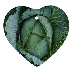 Bright Cabbage Color Dew Flora Heart Ornament (two Sides)
