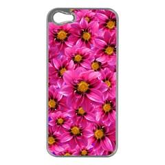 Dahlia Flowers Pink Garden Plant Apple Iphone 5 Case (silver)