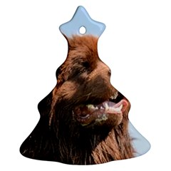 Newfie Brown Christmas Tree Ornament (Two Sides) by TailWags