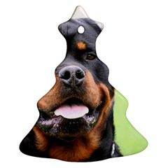 Rottweiler Christmas Tree Ornament (Two Sides) by TailWags