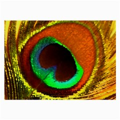 Peacock Feather Eye Large Glasses Cloth by Nexatart