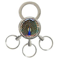 The Peacock Pattern 3 Ring Key Chains