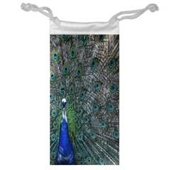 Peacock Four Spot Feather Bird Jewelry Bag by Nexatart