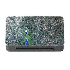 Peacock Four Spot Feather Bird Memory Card Reader with CF by Nexatart