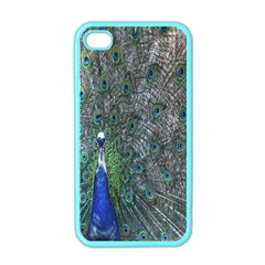 Peacock Four Spot Feather Bird Apple Iphone 4 Case (color)