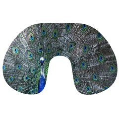 Peacock Four Spot Feather Bird Travel Neck Pillows