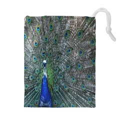 Peacock Four Spot Feather Bird Drawstring Pouches (extra Large) by Nexatart