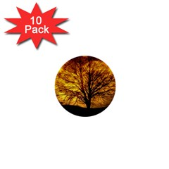 Moon Tree Kahl Silhouette 1  Mini Buttons (10 Pack)  by Nexatart
