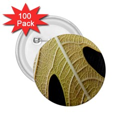 Yellow Leaf Fig Tree Texture 2.25  Buttons (100 pack)  by Nexatart