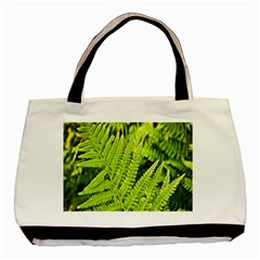 Fern Nature Green Plant Basic Tote Bag by Nexatart