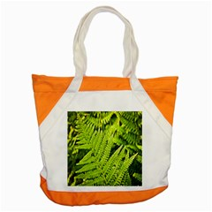Fern Nature Green Plant Accent Tote Bag by Nexatart