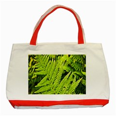 Fern Nature Green Plant Classic Tote Bag (red) by Nexatart