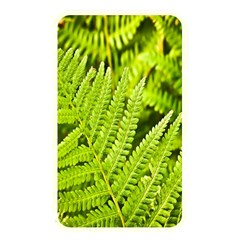 Fern Nature Green Plant Memory Card Reader by Nexatart