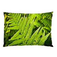 Fern Nature Green Plant Pillow Case (two Sides)