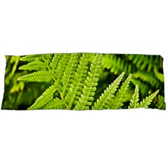 Fern Nature Green Plant Body Pillow Case Dakimakura (two Sides) by Nexatart
