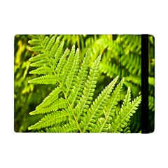 Fern Nature Green Plant Apple Ipad Mini Flip Case by Nexatart