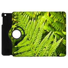 Fern Nature Green Plant Apple Ipad Mini Flip 360 Case by Nexatart