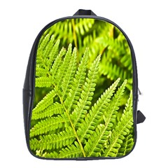 Fern Nature Green Plant School Bags (xl)  by Nexatart