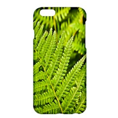 Fern Nature Green Plant Apple Iphone 6 Plus/6s Plus Hardshell Case