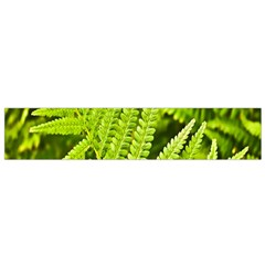 Fern Nature Green Plant Flano Scarf (small) by Nexatart