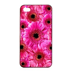 Gerbera Flower Nature Pink Blosso Apple Iphone 4/4s Seamless Case (black)