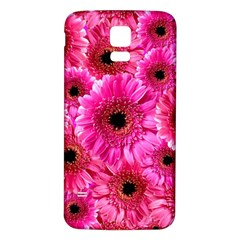 Gerbera Flower Nature Pink Blosso Samsung Galaxy S5 Back Case (white)