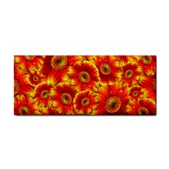 Gerbera Flowers Blossom Bloom Cosmetic Storage Cases by Nexatart