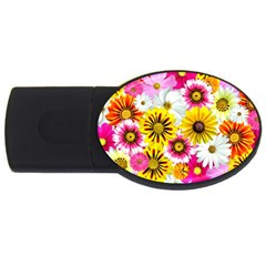 Flowers Blossom Bloom Nature Plant Usb Flash Drive Oval (4 Gb) by Nexatart
