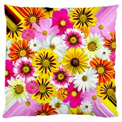 Flowers Blossom Bloom Nature Plant Large Flano Cushion Case (two Sides)