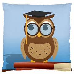 Read Owl Book Owl Glasses Read Large Cushion Case (two Sides) by Nexatart