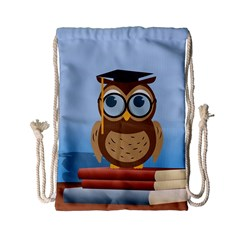 Read Owl Book Owl Glasses Read Drawstring Bag (small) by Nexatart