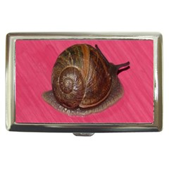 Snail Pink Background Cigarette Money Cases