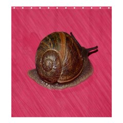 Snail Pink Background Shower Curtain 66  X 72  (large)