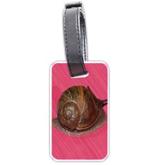 Snail Pink Background Luggage Tags (one Side)