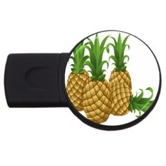Pineapples Tropical Fruits Foods Usb Flash Drive Round (2 Gb)
