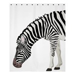 Shower Curtain 60  x 72  (Medium)
