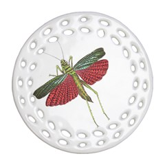 Grasshopper Insect Animal Isolated Round Filigree Ornament (two Sides)